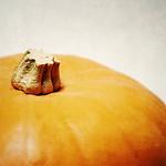 20130130 Pumpkin