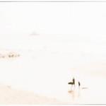 20130907 Surfers' Beach
