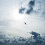 20140809 Mudeford Sky